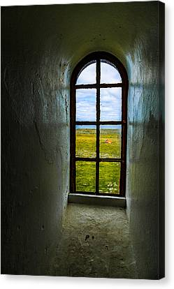 The View Canvas Print by Arve Sirevaag