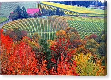 The View From Red Ridge Canvas Print by Margaret Hood