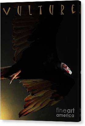 The Vulture . With Text Canvas Print by Wingsdomain Art and Photography