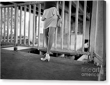 Canvas Print featuring the photograph The Wait by Dean Harte