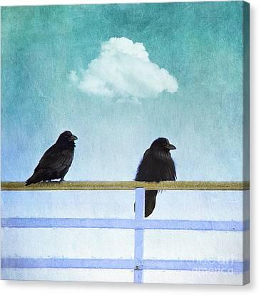 Blackbird Canvas Print - The Wait by Priska Wettstein