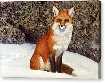 The Wait Red Fox Canvas Print