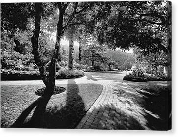 Brentwood Canvas Print - The Walkway Bw by Lawrence Christopher