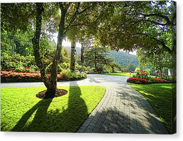 Brentwood Canvas Print - The Walkway by Lawrence Christopher
