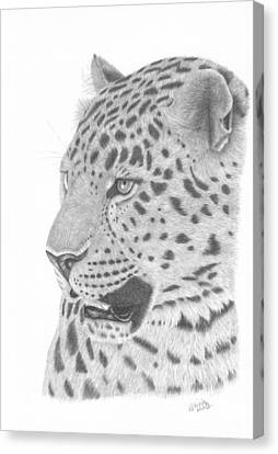 The Watchful Leopard Canvas Print