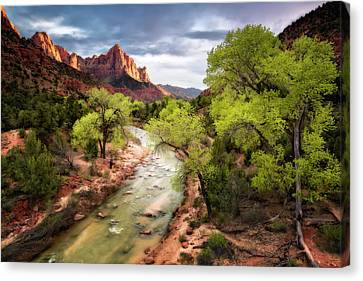 Canvas Print featuring the photograph The Watchman by Eduard Moldoveanu