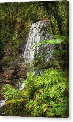 Canvas Print featuring the photograph The Waterfall by Hanny Heim