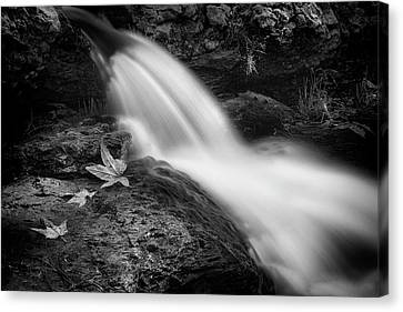 Canvas Print featuring the photograph The Waterfall In Black And White  by Saija Lehtonen