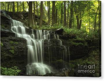 The Waterfall In The Forest Canvas Print by Mary Lou Chmura