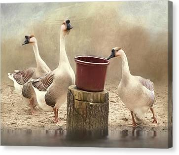 Canvas Print featuring the photograph The Watering Hole by Robin-Lee Vieira