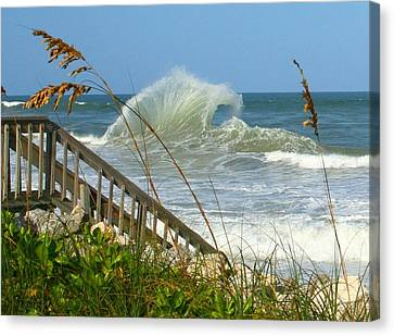 Canvas Print featuring the photograph The Wave by Denise Moore