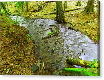 The Way Of Meltwater Canvas Print