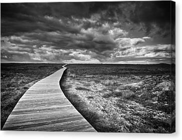 The Way Canvas Print by Santiago Pascual Buye