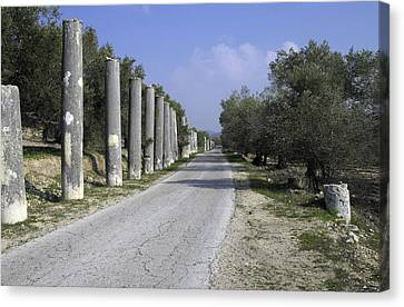 The Way To Sebastia Canvas Print