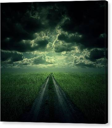 The Way Canvas Print by Zoltan Toth