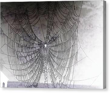 The Web We Weave Canvas Print by Margaret Hamilton
