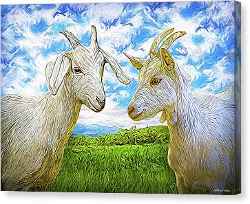 The Whispers Of Goats Canvas Print
