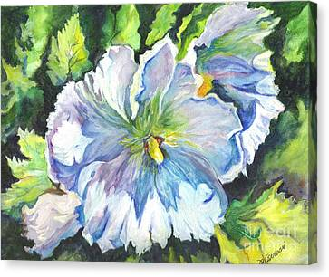 The White Hibiscus In Early Morning Light Canvas Print by Carol Wisniewski