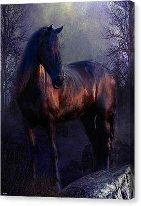 Bay Horse Canvas Print - The Wild Mare by G Berry