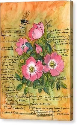 The Wild Rose Canvas Print