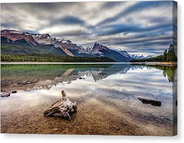 The Wild Shores Of Maligne Lake Canvas Print
