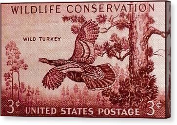 The Wild Turkey Stamp Canvas Print