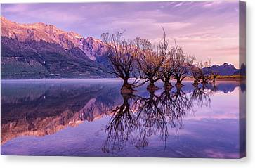 Aotearoa Canvas Print - The Willow Whistles by Kumar Annamalai