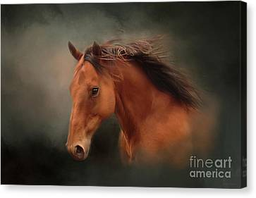 Bay Horse Canvas Print - The Wind Of Heaven - Horse Art by Michelle Wrighton