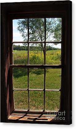 The Window 2 Canvas Print by Joanne Coyle