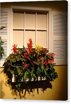 The Window Box Canvas Print