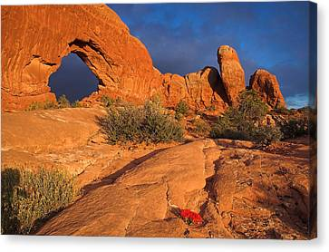 Canvas Print featuring the photograph The Window by Steve Stuller