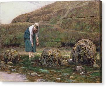 The Winkle Gatherer Canvas Print by John Dawson Watson