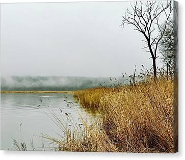 The Winter Marsh Canvas Print