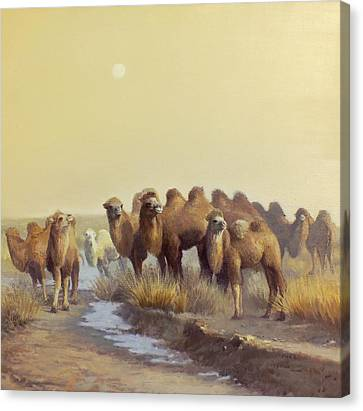Camel Canvas Print - The Winter Of Desert by Chen Baoyi
