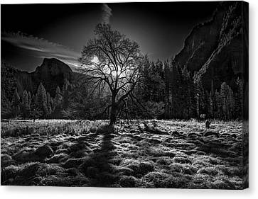 The Winter Spirit Canvas Print