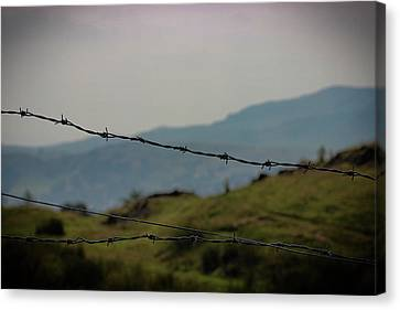 Barbed Wire Fences Canvas Print - The Wire by Martin Newman