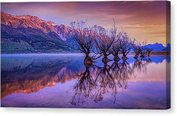Aotearoa Canvas Print - The Witches Of Glenorchy by Kumar Annamalai