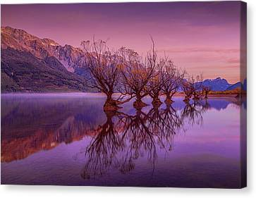 Aotearoa Canvas Print - The Witches Of Glenorchy Pt 2 by Kumar Annamalai