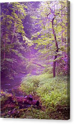 The Wonder Of Nature  Two Canvas Print by John Stuart Webbstock
