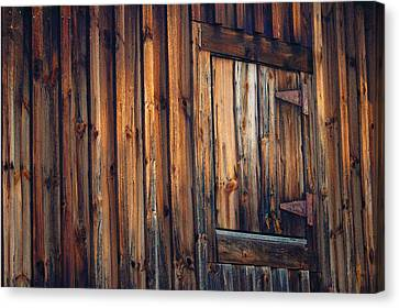 The Wonders Of Wood Canvas Print by Ross Powell