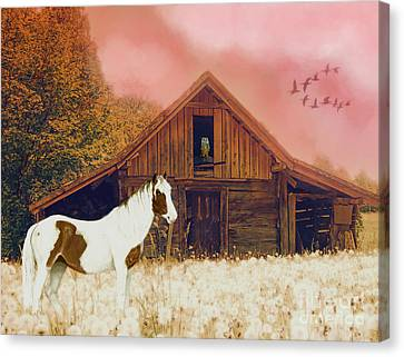 The Wood Shed Canvas Print by KaFra Art