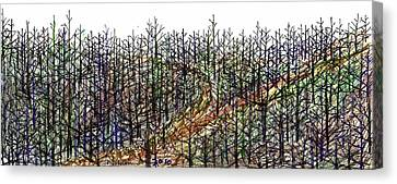 The Woods Canvas Print by Tex Norman
