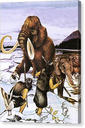 Javelin Canvas Print - The Woolly Or Siberian Mammoth by Susan Neale