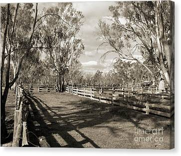 Canvas Print featuring the photograph The Yards by Linda Lees