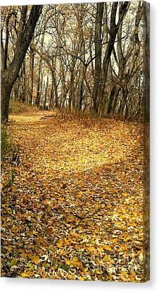 The Yellow Leaf Road- Version II  Canvas Print by Scott D Van Osdol