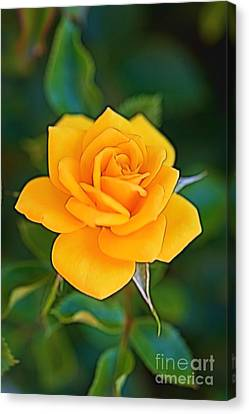 Canvas Print featuring the photograph The Yellow Rose by Michael Moriarty