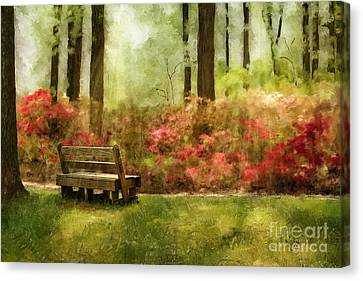 The You You Used To Be Canvas Print by Lois Bryan