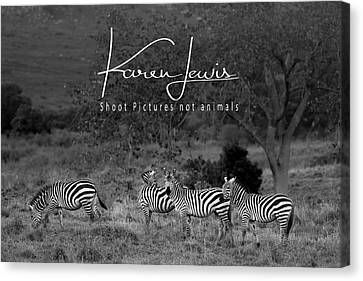 Canvas Print featuring the photograph The Zebra Tree by Karen Lewis