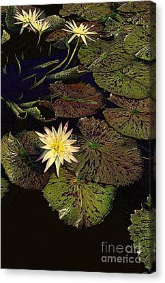 Thebian Water Garden Canvas Print by Nancy Kane Chapman