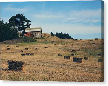 Bales Canvas Print - There All Along by Laurie Search